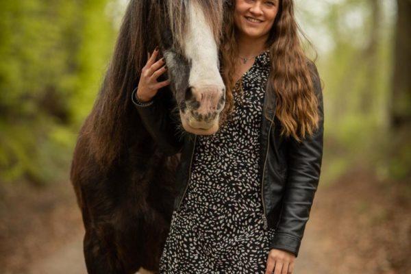 Pferdefotograf
